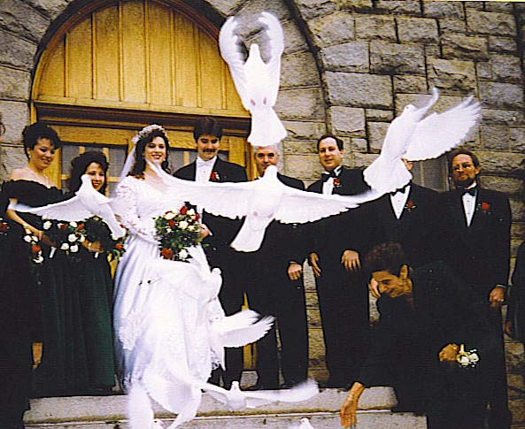 white dove release at wedding